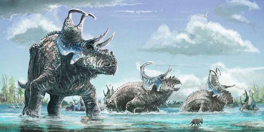 découverte-dinosaure