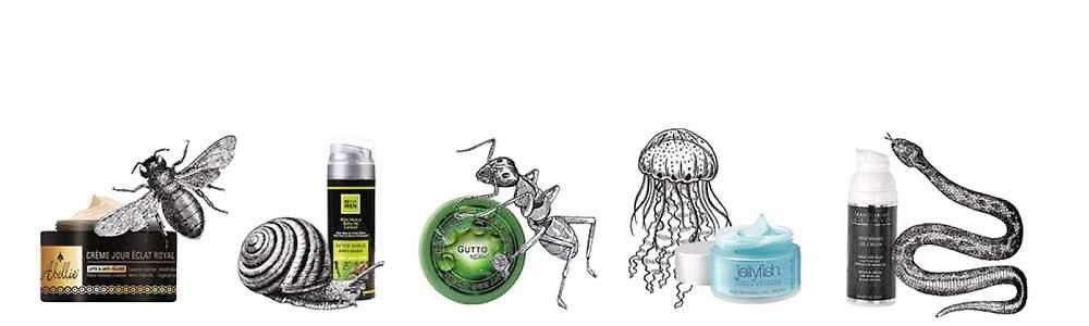 insecte-cosmetique-sarbec