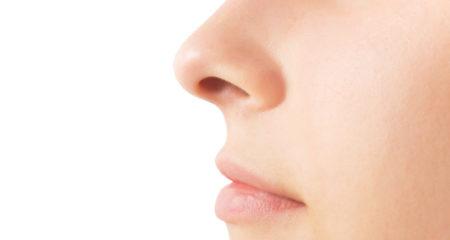 la rhinoplastie du nez