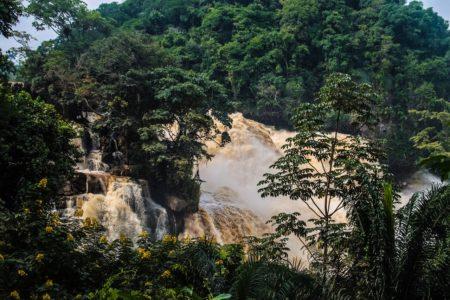Emile Ouosso parle de la prise de conscience des Congolais envers l'environnement