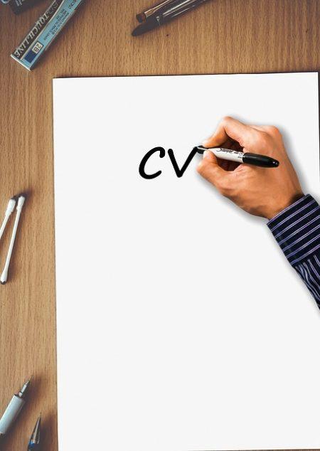 exemple de CV original