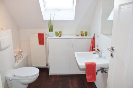 Comment débloquer une toilette sans piston ?